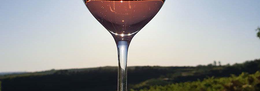 Schaum- und Perlweinerzeugung